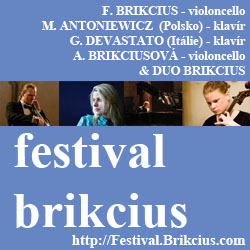 Brikcius 2013